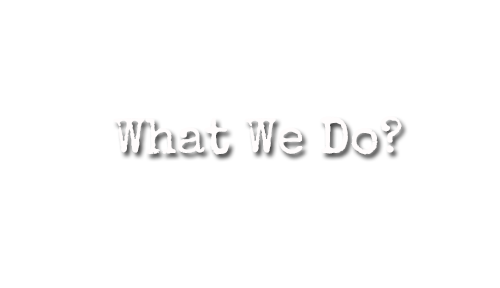 what we do-social-meida